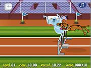 Scooby Doo Hurdle Race