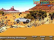 Desert Driving Challenge