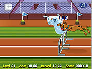 Scooby Doo Hurdle Race