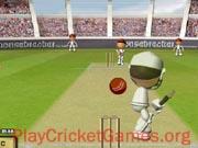 Flash Cricket 2