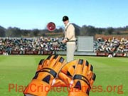 Test Catch Cricket